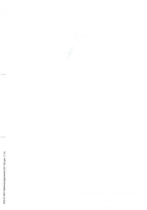 Vollstreckungsprotokoll, (GV 133), Bayern, 31BAY, VPE 100 ST