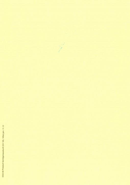 Protokoll Vermögensauskunft (GV 165, 165a), Bayern, 66, VPE 100 ST