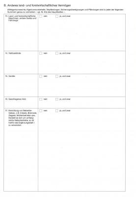 Ergänzungsblatt II zu Nr. 22a u. 23 des VV, 37N99/1, VPE 100 ST