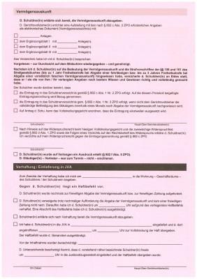 Protokoll Vermögensauskunft/Verhaftung (GV 165, 166), Bayern, 3006/12, VPE 100 ST